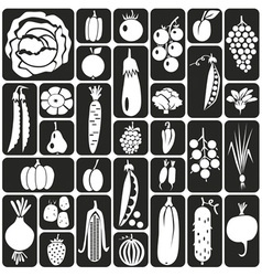 Fruit and vegetables icons vector