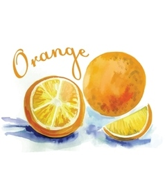 Watercolor orange fruit label with the inscription vector