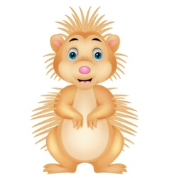 Cute porcupine cartoon vector image vector image