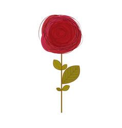 Red rose in white background vector