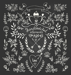Set of floral hand-drawn elements on the vector image