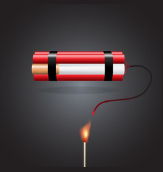 cigarette with dynamite vector image