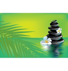 Spa stones in tropics vector image