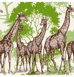 Animal print safari wallpaper giraffe in vector