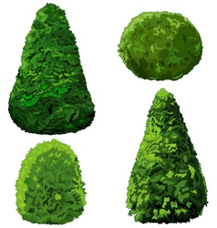 Collection of bushes and cypress vector