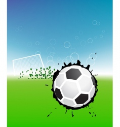 football vector image vector image