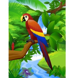 parrot and waterfall vector image
