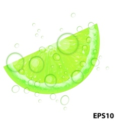 Fresh juicy lime background vector