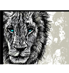 Hand drawn sketch of a lion looking intently at th vector
