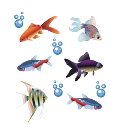 Six separate fishes vector