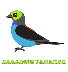 Paradise tanager bird line art icon vector