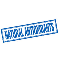 Natural antioxidants vector