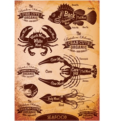 Set of diagram cut carcasses seafood vector