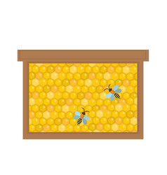 Honeycomb in wooden frame icon flat style vector