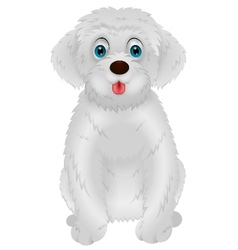 Cute white dog cartoon vector image