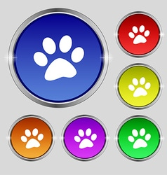 Paw icon sign round symbol on bright colourful vector