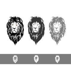 Three Lion Portraits vector image vector image