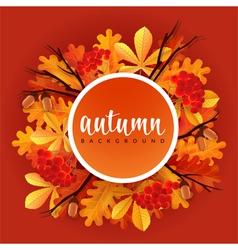 Autumn border with oak and chestnut leaves rowans vector