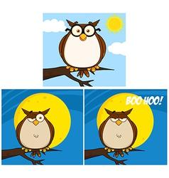 Cartoon owl design vector image vector image