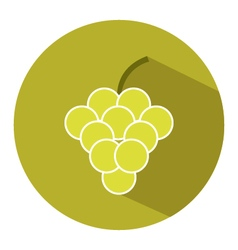 icon grape vector image