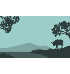 Single bison silhouette vector