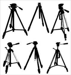 camera tripods vector image vector image