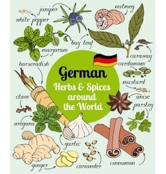 German herbs and spices vector