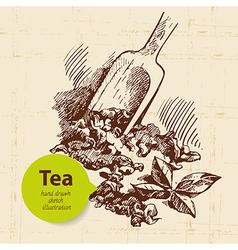 Tea vintage background hand drawn sketch vector