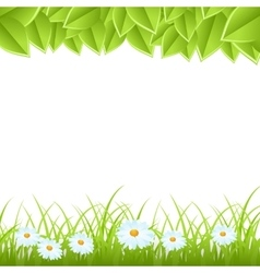 template with leaves and grass vector image vector image