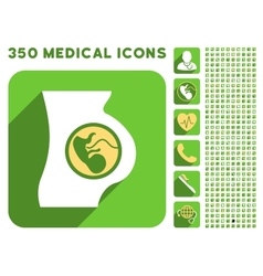 Pregnancy anatomy icon and medical longshadow icon vector