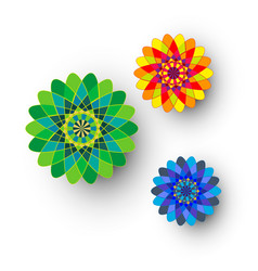 different kaleidoscopic flowers vector image