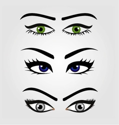 Different types of womens eyes vector image vector image