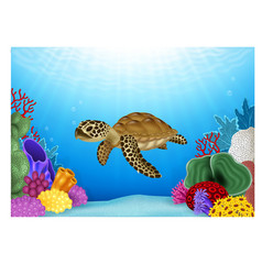 Cartoon of turtle with beautiful underwater vector