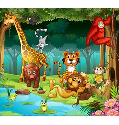 Animals and forest vector image