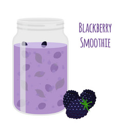 blackberry smoothie vegetarian organic detox drink vector image vector image