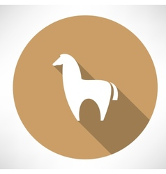 Alpaca icon vector