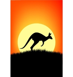 australia kangaroo vector image vector image