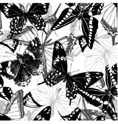 Seamless pattern with hand drawn butterflies vector