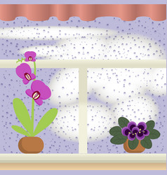 window with raindrops vector image vector image