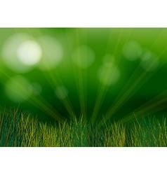 A spotlight in the garden vector image vector image