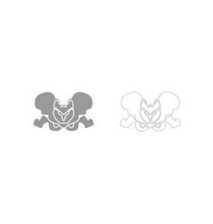 Pelvis skeleton grey set icon vector