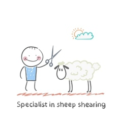 Specialist sheep shearing vector image vector image