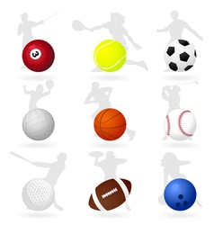 sports balls vector image vector image
