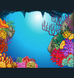 Underwater scene with coral reef in cave vector