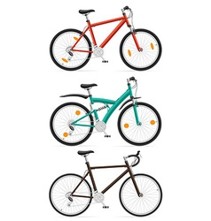 bicycle 11 vector image vector image