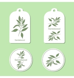 Sandalwood tree branch tags and labels vector