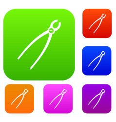 Tooth extraction instrument set collection vector