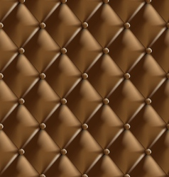 Genuine leather upholstery 1 vector image