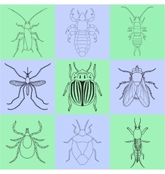Insect icons set earwig and tick stink bug and vector