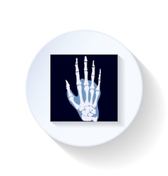 X-ray photograph flat icon vector